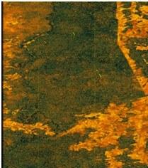 Tanden TerraSAR-X 1