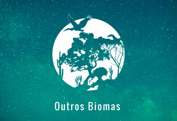 Outros Biomas