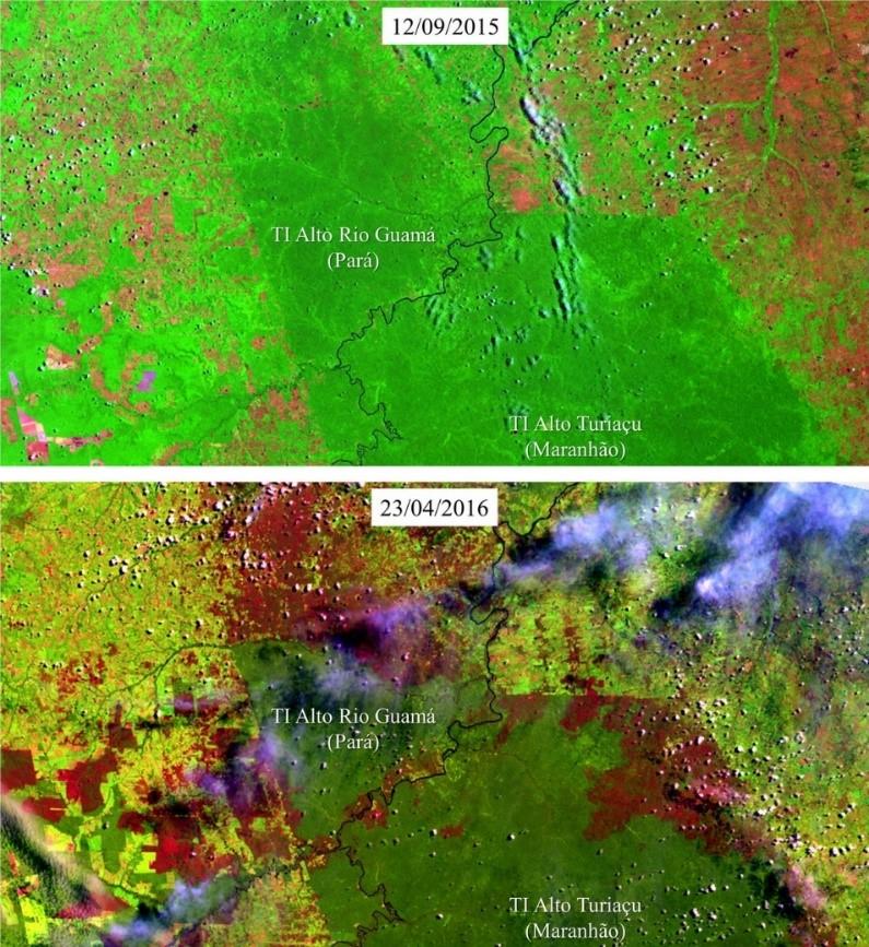 Cicatrizes de incêndios florestais (em vermelho escuro) nas Terras Indígenas Alto Rio Guamá e Alto do Turiaçu, na divisa entre os estados do Pará e Maranhão