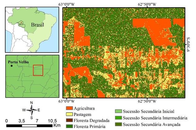 Local e Resultado Parcial - SAR na Amazônia