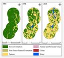 Figura - Mudança uso e cobertura da terra no Complexo Hidrelétrico