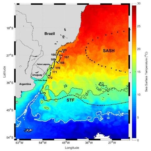 Temperatura da superfície do mar durante o estudo (junho)
