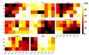 Avaliações de desempenho relativo por pixel em determinado tipo óptico de água.
