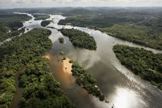 Projeto é a primeira iniciativa do Brasil para a coleta de um grande volume de dados LiDAR no bioma Amazônia.
