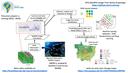 Visão do Projeto Brazil Data Cube